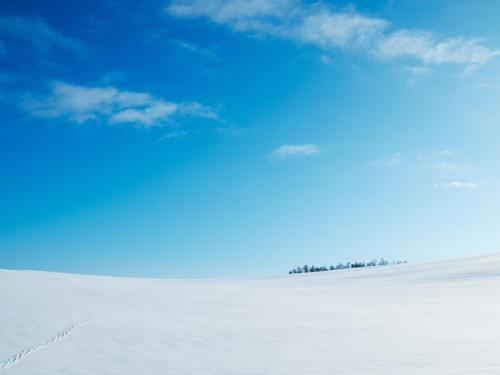 真っ白な雪と青空